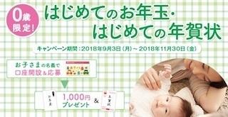 0歳限定はじめてのお年玉・はじめての年賀状.jpg